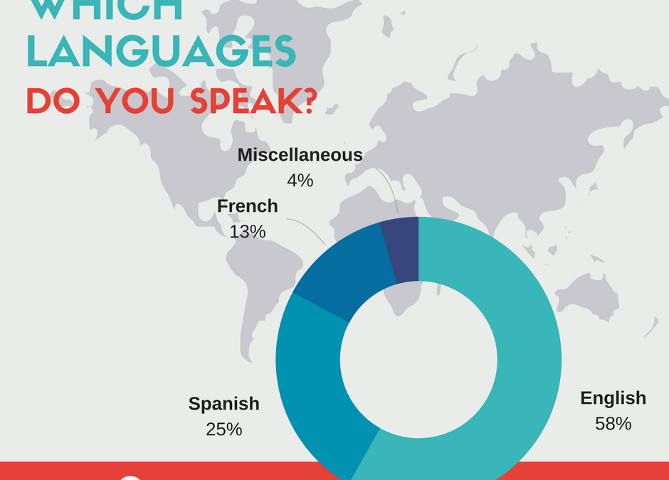 Which language is the most popular on HigherEdMe?
