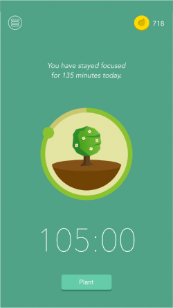 view of the forest app