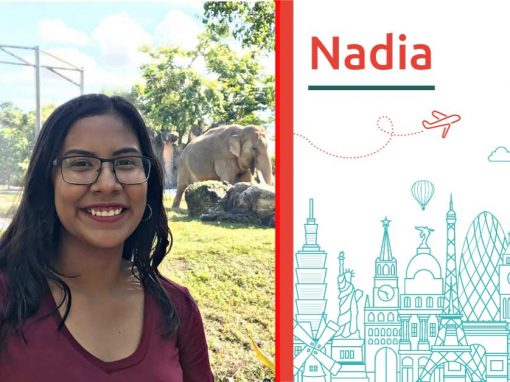 """Discover about """"Nadia"""""""